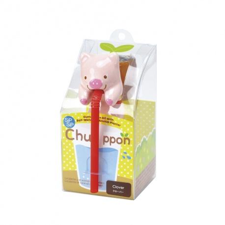 Chuppon COChON (Trèfle)
