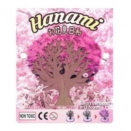 Cerisier magique HANAMi (h11.5cm)